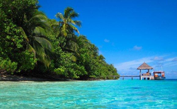 «Тропический рай»